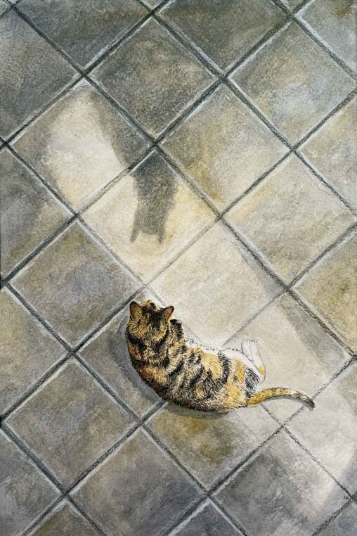 Watercolor and ink illustration of a cat on a tile floor looking at the shadow of another