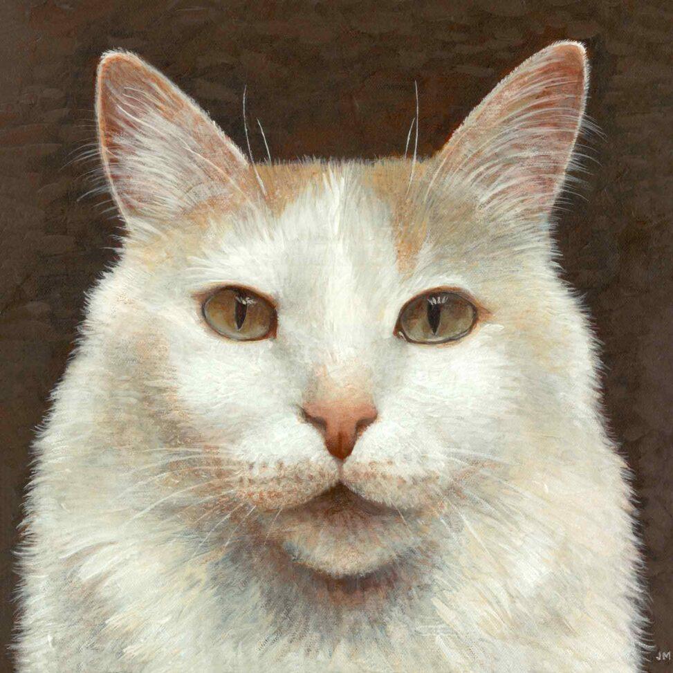 Portrait of TJ (cat)